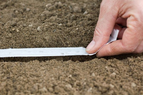 Cómo preparar una cinta de siembra. Qué es una cinta de siembra. Cómo sembrar con una cinta de papel