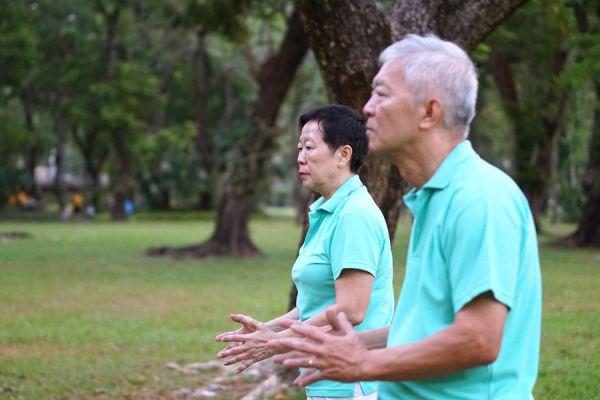 Beneficios de la terapia chi kung. Ejercicios básicos de chi kung. Cómo practicar chi kung. Ejercicios para hacer chi kung