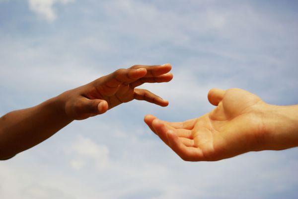 5 principios de la práctica del reiki. Los 5 fundamentos principales del reiki.