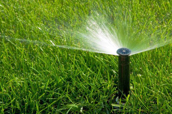 Consejos para mejorar el césped del jardín. Tips para mejorar el césped. Claves para mejorar el césped de tu jardín