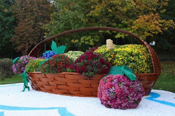 Cómo hacer un cajón de siembra o para colocar tiestos. Cajón para sembrar hierbas en el balcón