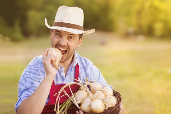 Solución a problemas habituales de jardinería. Cómo evitar los problemas comunes en jardinería. Problemas de jardinería y su solución