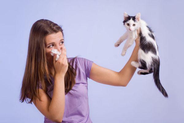 Síntomas comunes de las alergias. Sintomas de alergias. Señales de que tienes alergia. Alergias alimentarias