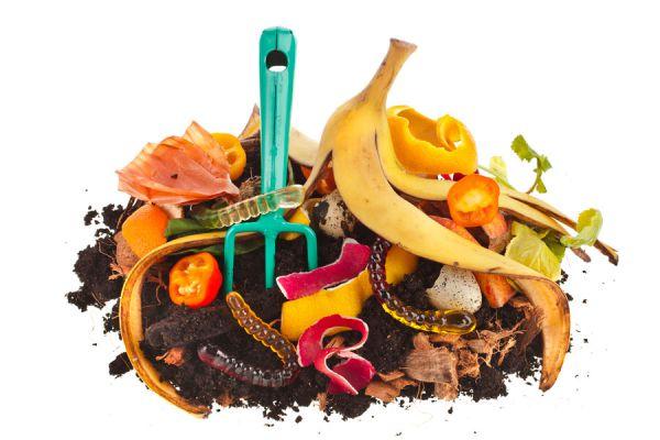 Desechos que no hay que usar en la compostera. Cómo hacer abono organico, desechos que no hay que usar. Ingredientes que no hay que usar en el compost