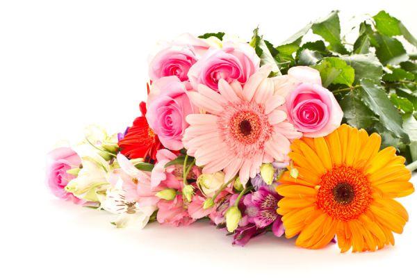 Paso para estampar flores y hojas naturales sobre telas. Estampado de flores y hojas naturales. Cómo estampar flores sobre telas