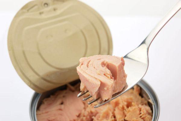 10 comidas para hacer con atún en lata. Cómo preparar recetas con atún. 10 recetas fáciles para hacer con atún desmenuzado. Recetas con atún enlatado