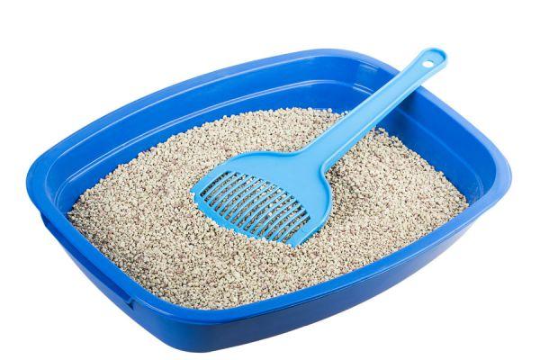 15 ideas para aprovechar la arena para gatos. Usos de las piedras sanitarias para gatos. Ideas para usar la arena para gatos