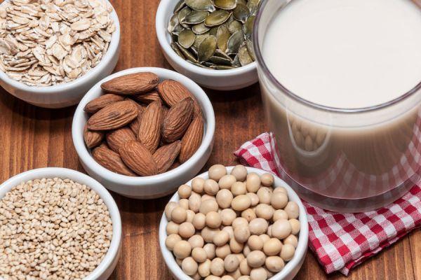 Cómo consumir leche vegetal. Métodos para elaborar leche sin lactosa. Propiedades de la leche vegetal.