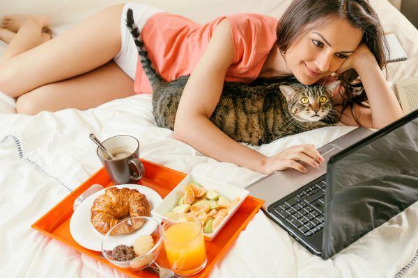 Actitudes de los gatos donde demuestran afecto. Cómo demuestran los gatos que te quieren. Demostraciones de cariño de los gatos
