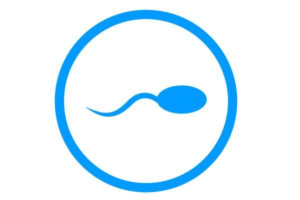 Requisitos para ser donante de esperma. Qué es la donación de esperma? Tips para hacerse donante de esperma