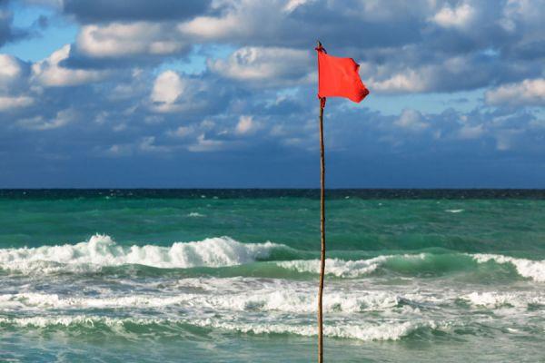 Sintomas de la marea roja en humanos. Toxinas de la marea roja.