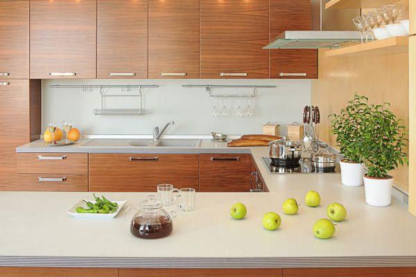 Decoración del hogar con plantas. Cómo elegir plantas para decorar la casa. Tips para decorar el living con plantas y flores