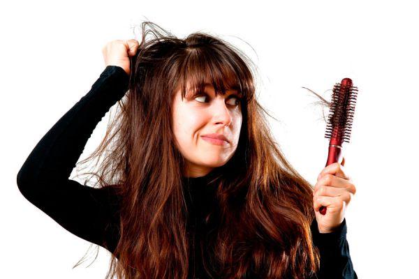 Cómo preparar desenredantes caseros. ingredientes para hacer un desenredante para el pelo.