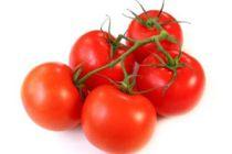 Cómo elegir tomates