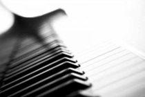 Cómo elegir tu primer piano