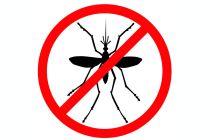 Ingredientes para preparar repelente para mosquitos