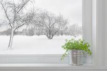 Cómo Aislar las Ventanas en Invierno