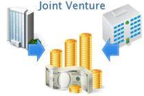 ¿Qué son las joint venture?
