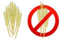 Alimentos con gluten y sin gluten