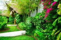 Cómo preparar el jardín para el verano