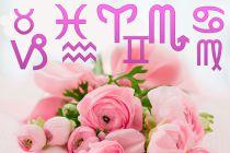 Qué Flores Regalar según su Signo