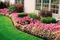 Cómo Evitar que las Malas Hierbas Invadan el Jardín