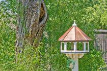 10 Ideas para Decorar el Jardín