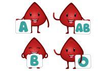 Grupo Sanguíneo y Personalidad: ¿Hay relación?