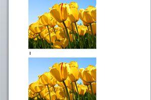 Truco para copiar imagenes en word más rápido. Como copiar imagenes en word sin usar copiar y pegar