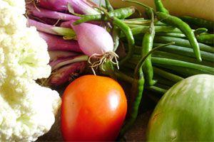 Ilustración de Cómo Conservar correctamente las Verduras