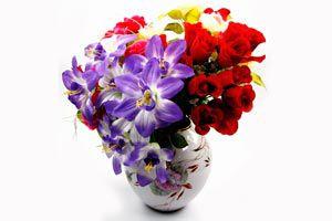 Ilustración de Como mantener con vida a las flores por mas tiempo