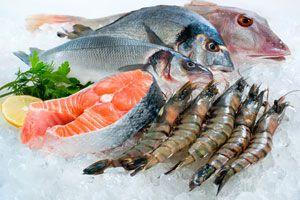 Ilustración de Cómo Cocinar el Pescado según su Tipo