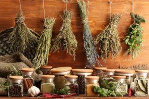 Consejos para cosechar las hierbas aromáticas.