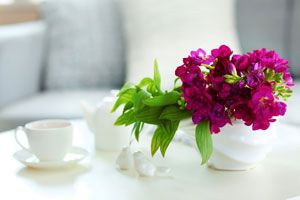 Ilustración de Cómo Mantener las Flores del Florero por más Tiempo