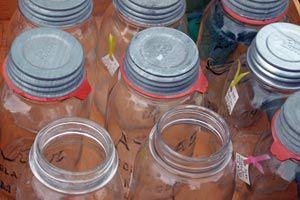 Cómo quitar el mal olor de un frasco