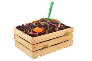 Abono orgánico en cajón de madera