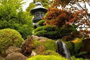 Un jardín perfumado. Como perfumar el jardín con arbustos.