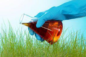 Soluciones orgánicas para la Huerta