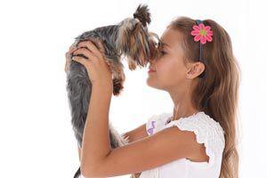 Ilustración de Cómo ayudar a superar la muerte de una mascota a un niño