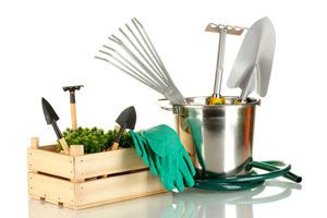 Ilustración de Como utilizar y cuidar nuestras herramientas de jardín