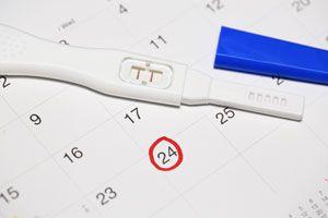 Cómo Calcular el Día de la Ovulación