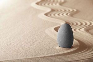 Jard n miniatura dentro de una bombilla - Hacer jardin zen ...