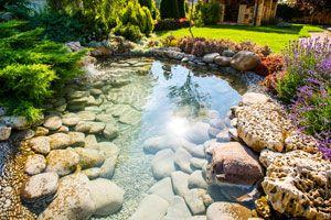 Como mantener un estanque