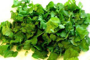 Ilustración de Cómo utilizar las propiedades del coriandro o cilantro