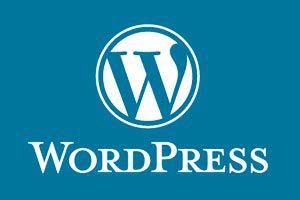 Cómo instalar un theme en Wordpress