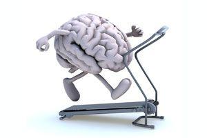 Cómo Mantener el Cerebro Activo y en Buena Forma