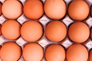 Qué es el colesterol HDL