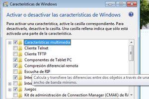 Como desactivar la compresión diferencial remota en Windows Vista