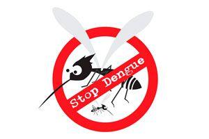 Cómo evitar la Reproducción del Mosquito del Dengue