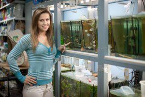 Consejos para elegir un acuario o pecera. Tipos de acuarios para elegir segun el tipo de agua y peces.